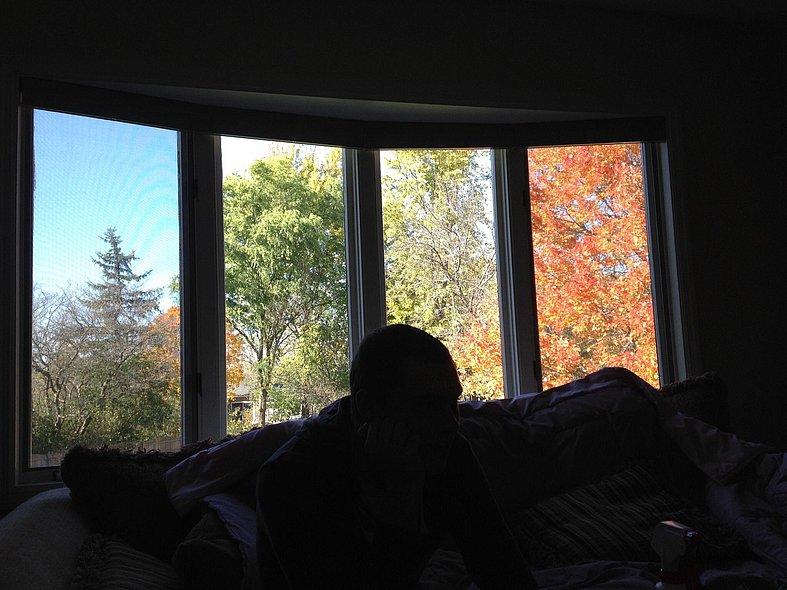 Four windows four seasons